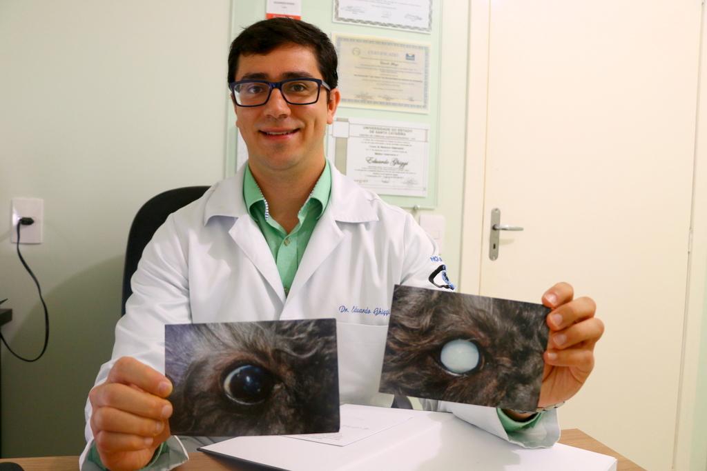 Veterinário devolve visão a cachorro cego em Lages sc