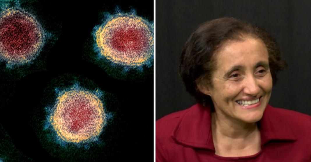 Pesquisadores brasileiros sequenciam genoma do coronavírus registrado no país 2