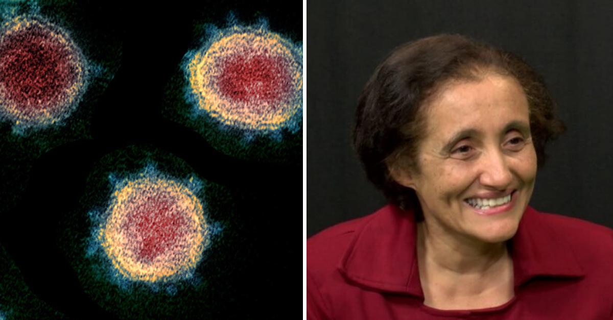 Pesquisadores brasileiros sequenciam genoma do coronavírus registrado no país 1
