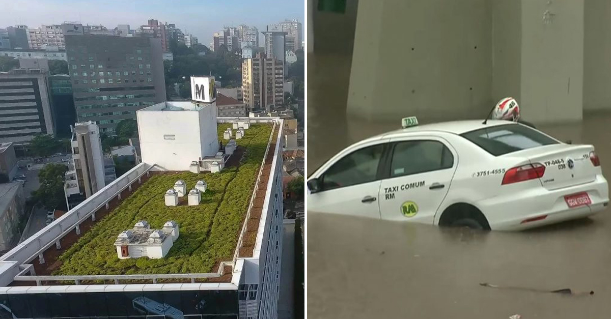 Telhados verdes podem ser a chave para o fim das enchentes 1