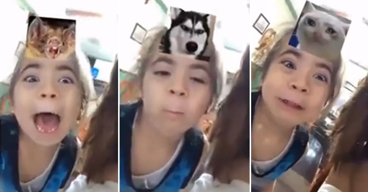 """Já temos a melhor imitadora do filtro """"qual animal você parece?"""" do Instagram 1"""