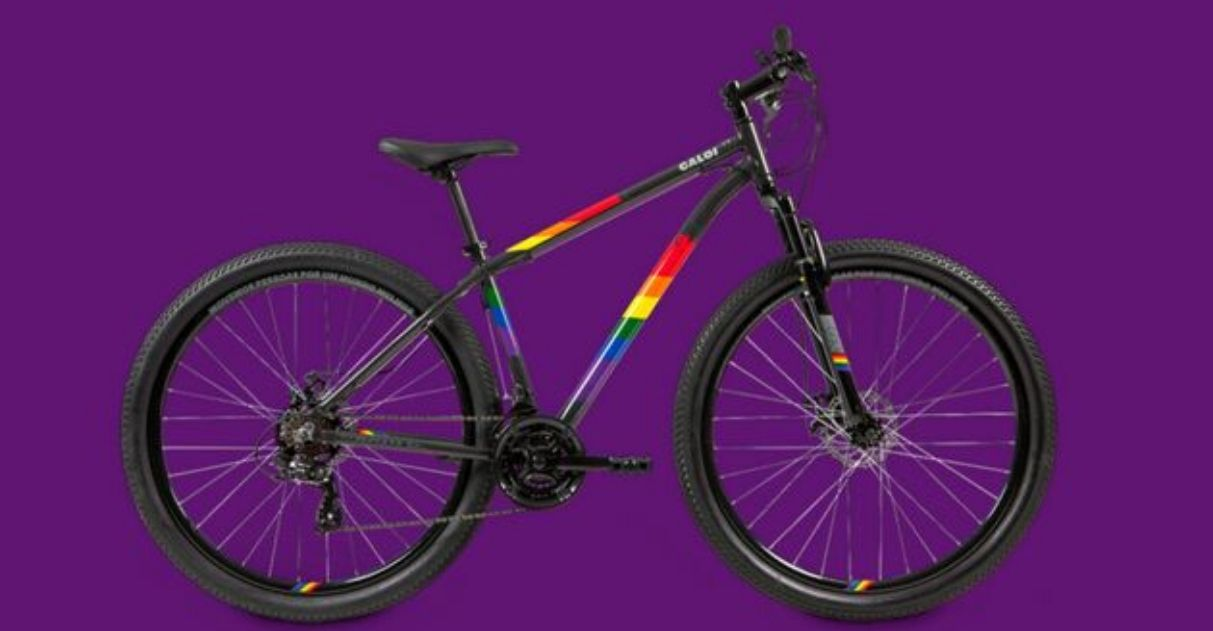 Caloi lança bicicleta 'Rainbow' e vai destinar lucro à casa de acolhimento LGBTI+ 1