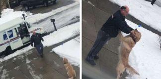 cachorro faz amizade com carteiro