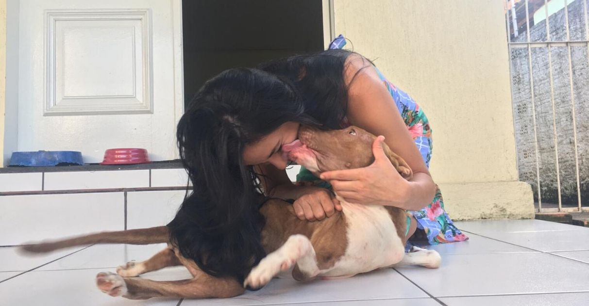 Casal adota pitbull com pernas curvadas abandonado em estrada de RO 1