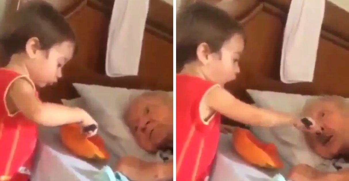 Menino alimenta idosa acamada com mamão vídeo