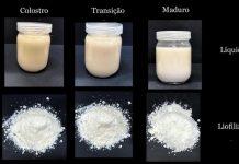 Pesquisadores brasileiros transformam leite materno em pó sem perder nutrientes