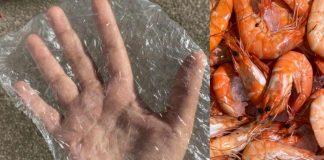 bioplástico degradável feito com cascas de camarão