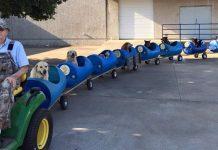 Idoso constrói trenzinho para cães que resgatou das ruas