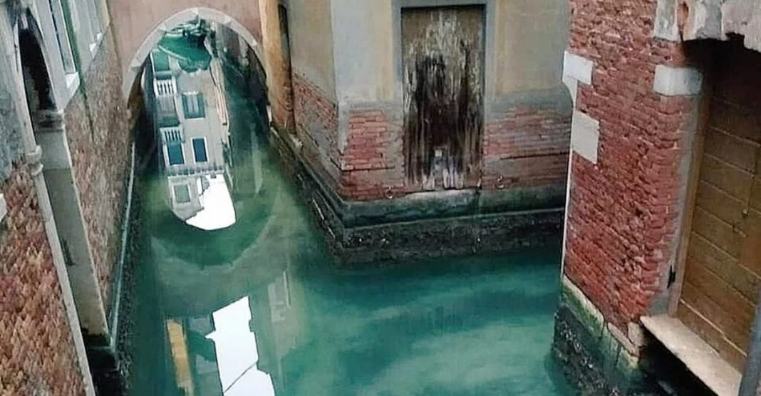 Canais de Veneza voltam a ter água cristalina após conter turismo de massa 1
