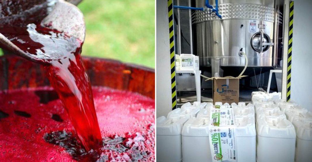 Coronavírus: Instituto Federal do RS vai transformar vinho em álcool 70% 2