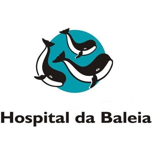 Mineirão Dahw Brasil doação Hospital da Baleia luta contra covid-19