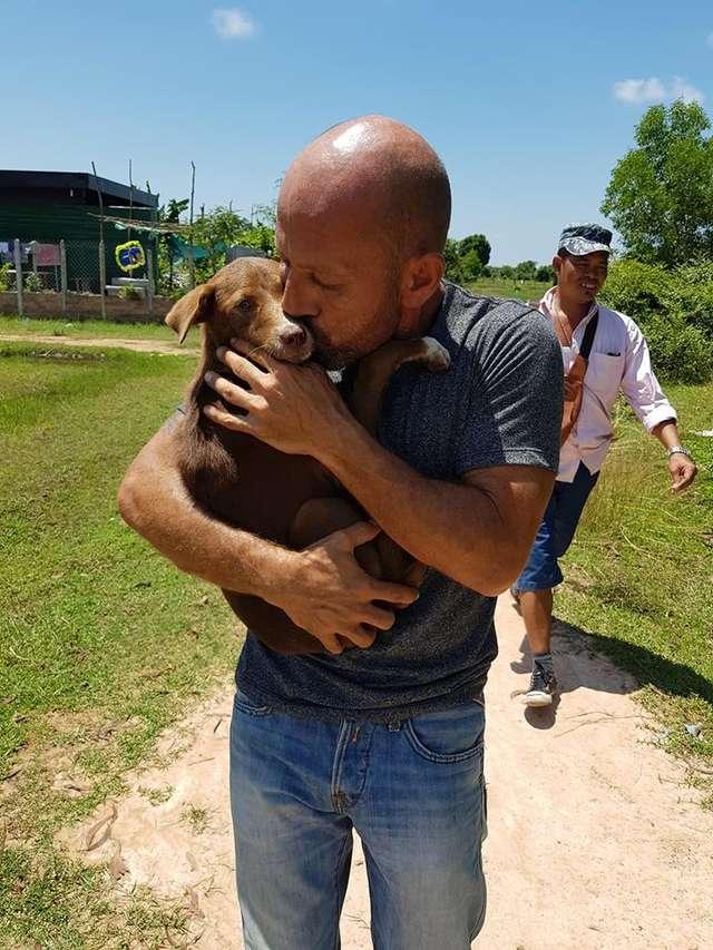 cachorrinha resgatada matadouro é adotada