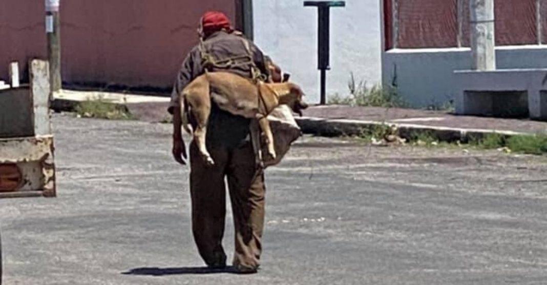 idoso carrega cachorro nas costas para ele não queimar suas patas