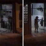Idosa se diverte dançando samba tocado na casa de vizinho; veja o vídeo