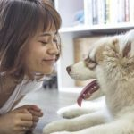 5 maneiras de entreter seu cachorro em casa