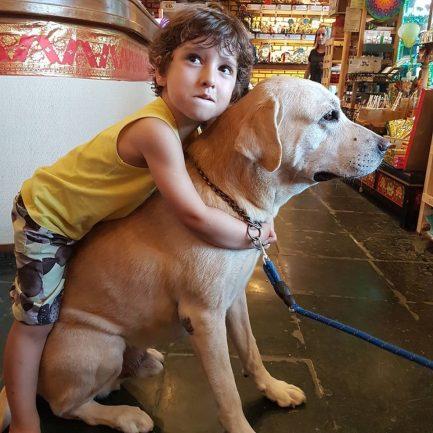 Criança abraçando cachorro dentro de loja