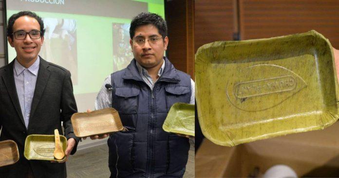 Jovens peruanos criam pratos que se degradam em 60 dias 3