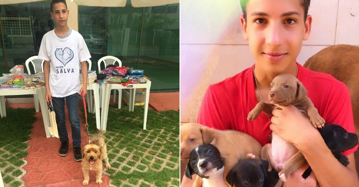 adolescente segurando filhotes cachorro colo