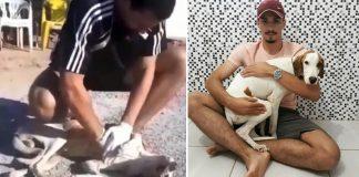 estudante veterinária massagem cardíaca cachorro