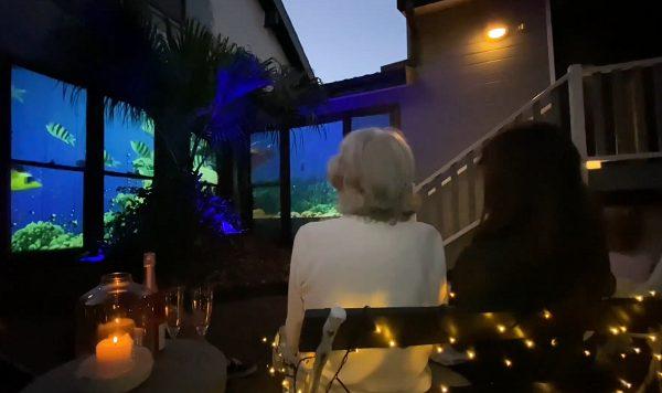 filho transforma janelas de casa aquário vivo para mãe alzheimer