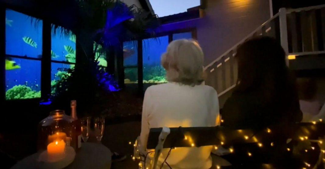 Filho transforma janelas de casa em aquário vivo e realiza desejo da mãe com Alzheimer 3