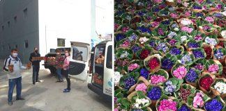 médicas enfermeiras recebem flores maternidade dedicação novas mães