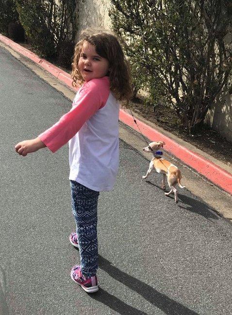 morador de rua entrega próprio filhote para ser adotado