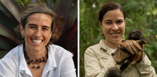 pesquisadoras brasileiras vencem maior prêmio conservação ambiental planeta