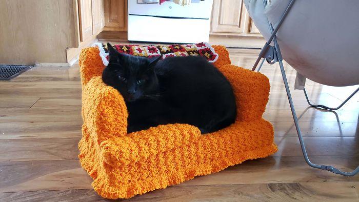 Com tempo de sobra na quarentena, donos estão fazendo sofás de crochê para seus gatinhos 8