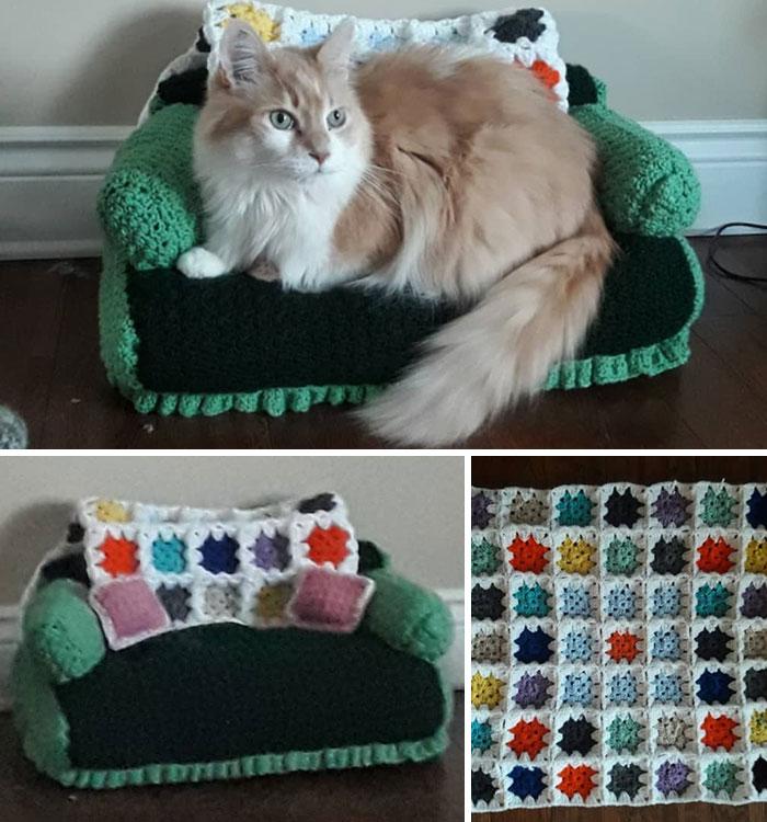 Com tempo de sobra na quarentena, donos estão fazendo sofás de crochê para seus gatinhos 2