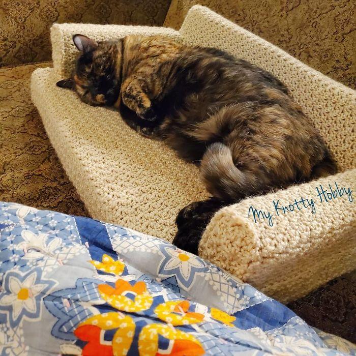 Com tempo de sobra na quarentena, donos estão fazendo sofás de crochê para seus gatinhos 6