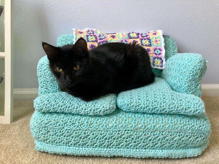 Com tempo de sobra na quarentena, donos estão fazendo sofás de crochê para seus gatinhos 1