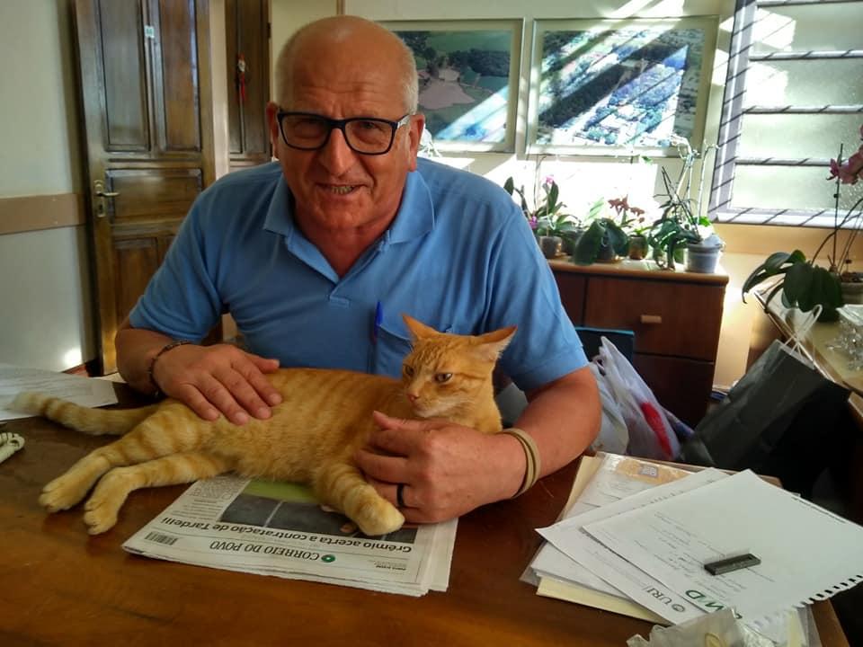 padre passa mão gato deitado mesa