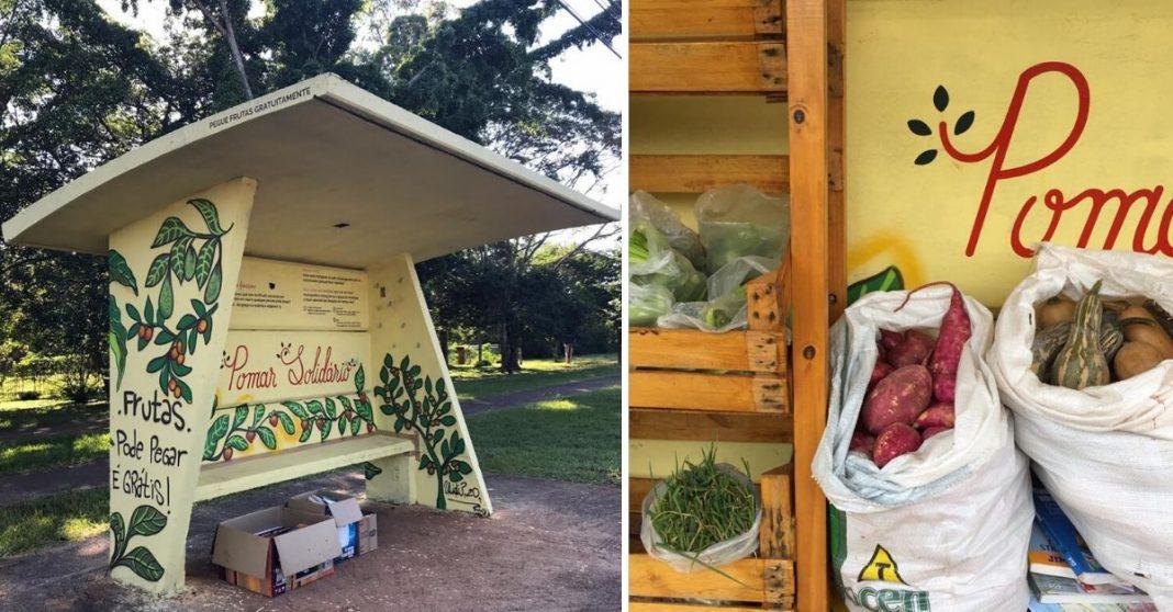 ponto ônibus transformado local distribuição frutas legumes