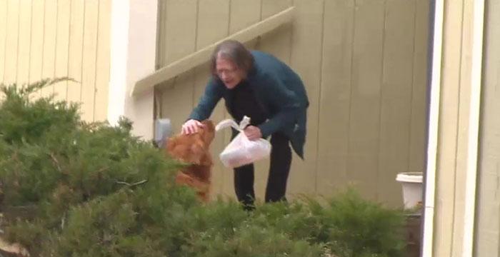Cachorro de vizinha entrega mantimentos para idosa com problemas respiratórios 2
