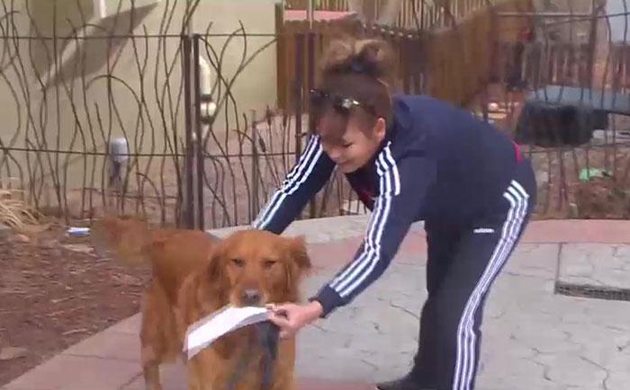 mulher entrega lista alimentos vizinha boca cachorro