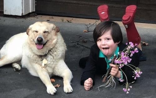 casamento menino e cachorra