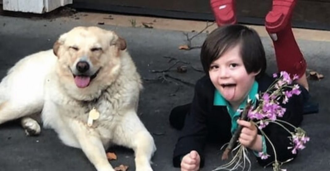 """Menino de 5 anos """"casa"""" com sua cachorra e nos mostra a doçura das crianças 2"""