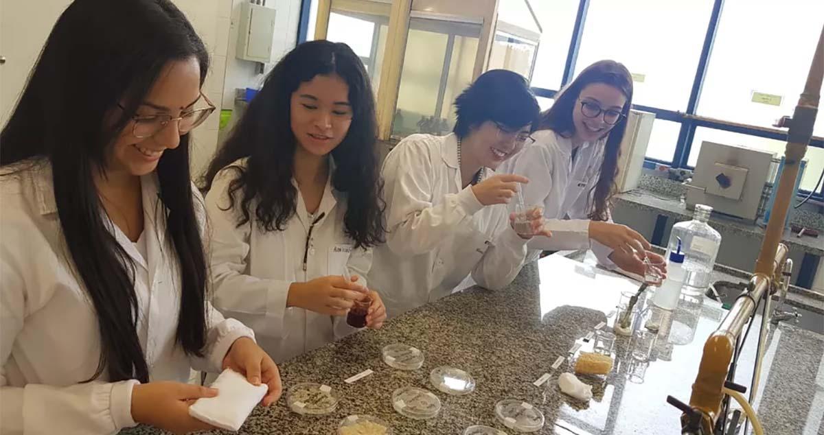 Estudantes de SP criam absorvente biodegradável