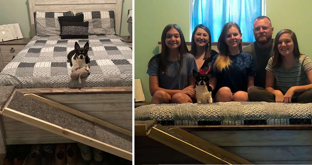 Família e a cachorra Sammy posando na cama com a rampa