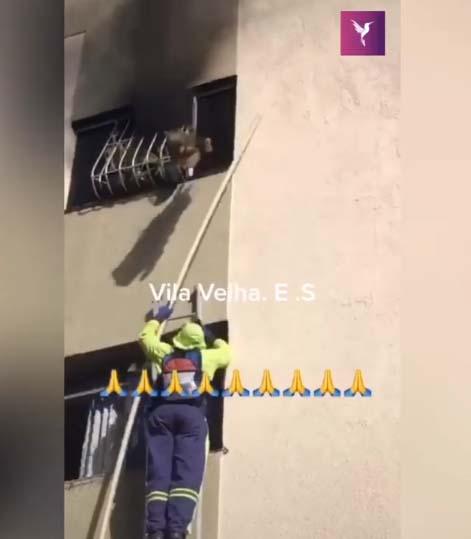 gari tenta tirar cachorro janela apartamento incêndio