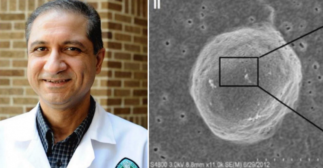 """Pesquisadores descobrem como """"desligar"""" gene que faz com que câncer de mama se desenvolva 2"""