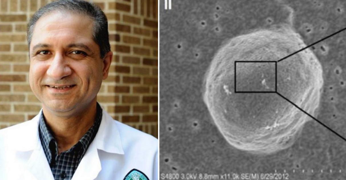 """Pesquisadores descobrem como """"desligar"""" gene que faz com que câncer de mama se desenvolva 1"""