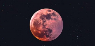 lua rosa capa
