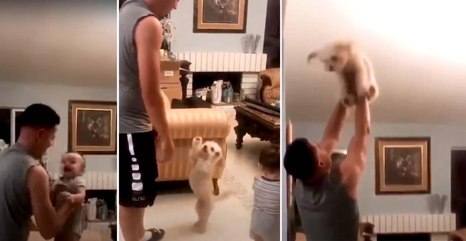 Pai, filho e cachorro brincando de pular
