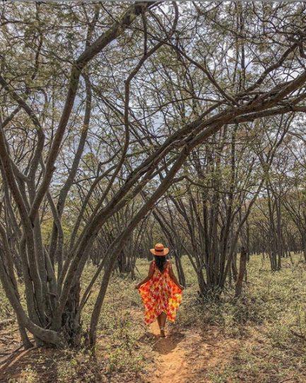 mulher caminhando vegetação seca interior nordeste