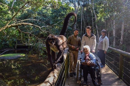 Ela fundou 4 santuários para salvar animais selvagens, unindo preservação com conscientização 3