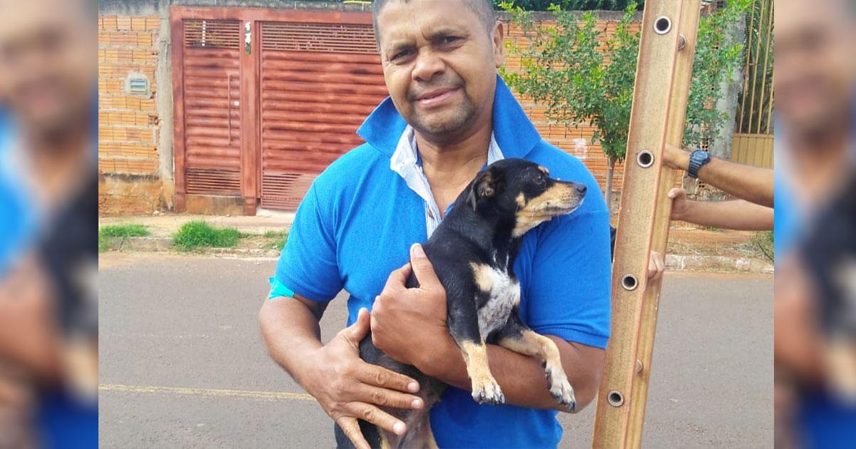 Homem entra em bueiro e salva cachorrinha atropelada em Campo Grande (MS) 2