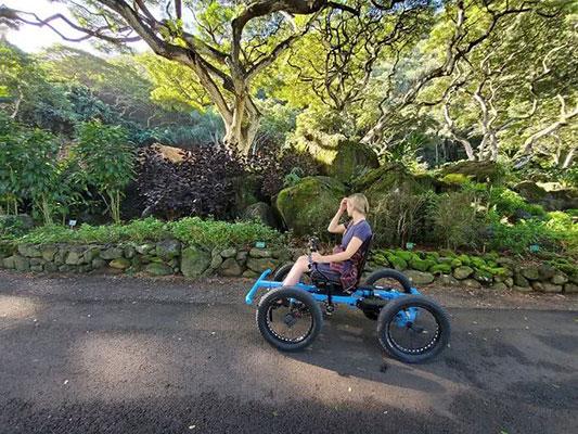 Marido cria cadeira de rodas off-road para a esposa ir a lugares que nunca imaginou 4