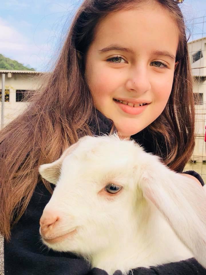 menina segurando cabra colo